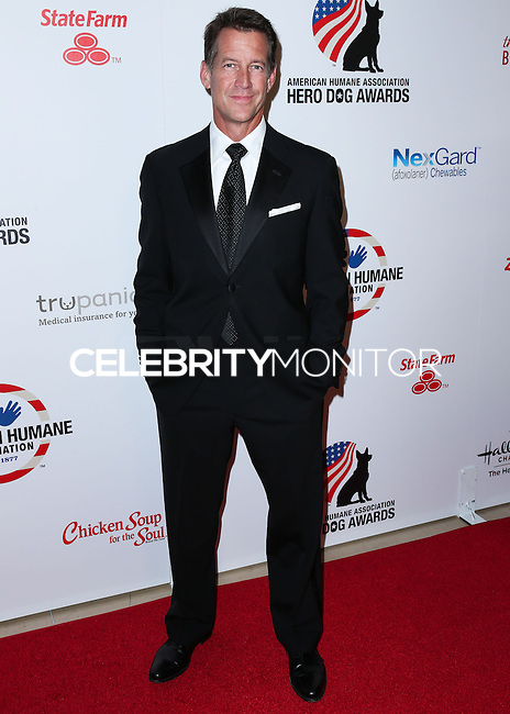 BEVERLY HILLS, CA, USA - SEPTEMBER 27: James Denton arrives at the 4th Annual American Humane Association Hero Dog Awards held at the Beverly Hilton Hotel on September 27, 2014 in Beverly Hills, California, United States. (Photo by Xavier Collin/Celebrity Monitor)