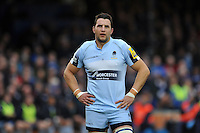 Phil Dowson of Worcester Warriors looks on during a break in play. Aviva Premiership match, between Bath Rugby and Worcester Warriors on December 27, 2015 at the Recreation Ground in Bath, England. Photo by: Patrick Khachfe / Onside Images
