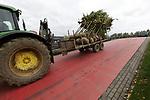 Foto: VidiPhoto<br /> <br /> OPHEUSDEN – Opnieuw is er gedoe over de rode weg in Opheusden. Afgelopen voorjaar maakten buurtbewoners zich boos over de felrode kleur. Nu blijkt het gedeelte naar de Rijnbandijk ook nog eens tijdens nat weer, spekglad te wordern. Omdat er al vrachtwagens zijn weggegleden is per direct door de gemeente een inrijverbod ingesteld voor vrachtverkeer. De gemeente Nederbetuwe ontkent dat het gebrek aan grip wordt veroorzaakt door de rode coating. Buurtbewoners denken daar anders over. Waardoor met name de voertuigen wegglijden wordt nu onderzocht. De weg wordt veel gebruikt door vrachtverkeer van en naar<br /> boomkwekerijen.