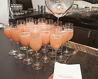 Michelle-Marie Heinemann's 6th Annual Bellini and Bloody Mary Hat Party