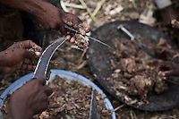 Relatives of Ambaun, 9 years old,  and Deghe, 7 years old, cut meat to be served at the children's wedding before the celebration commence   in a village in Northern Amhara region on February 16, 2009 in Ethiopia..While in decline, early child marriage is still widely spread in rural areas of Ethiopia where families sell their daughters into marriage at ages as young as 5 years old...Names of subjects have been fictionalized and specific locations have been omitted to protect the identities of the children portrayed in the story.