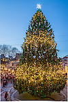 Holiday lights at the Faneuil Hall Marketplace, Boston, Massachusetts, USA