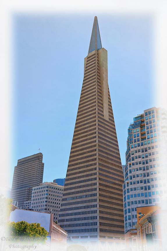 A view of the TransAmerica Pyramid Building in San Francisco.