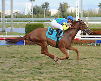 Dayatthespa captures the Sweetest Chant Stakes at Gulfstream Park on 1-22-12. Ridden by Javier Castellano