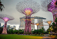 The so-called 'supertrees' in the Singpore Gardens by the Bay. In the background is the Marina Bay Sands resort hotel. The Las Vegas Sands Corporation agreed to build this park, in the southern part of the bay, as part of the deal to get the license for the Marina Bay Sands resort hotel and casino.