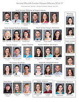 House Officer Composites