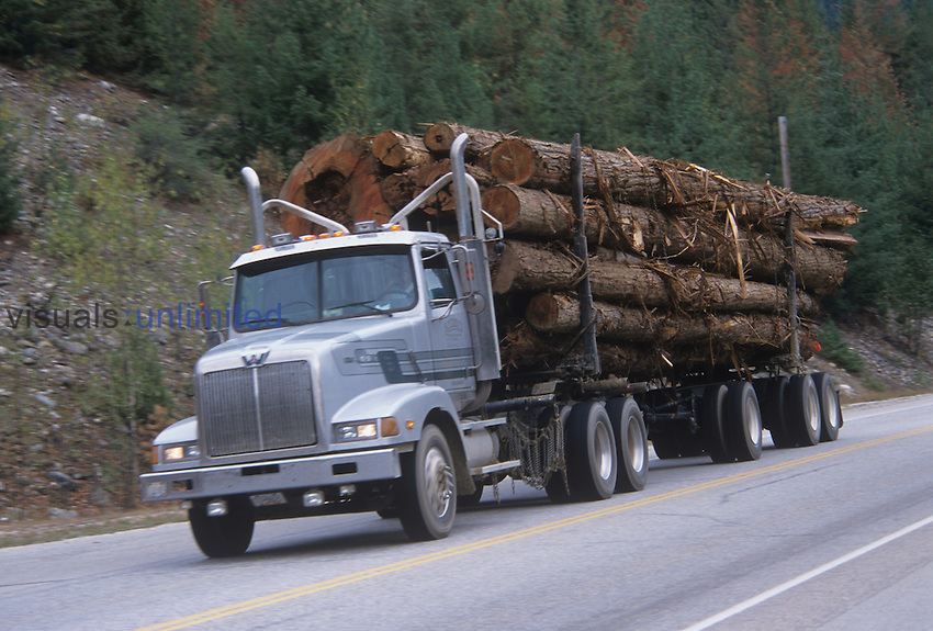 Logging truck carrying a large load of logs, Pacific Northwest, North America.