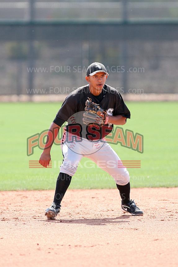 Eduardo Escobar, Chicago White Sox minor league spring training..Photo by:  Bill Mitchell/Four Seam Images.