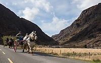 Tourists have the option of walking, riding in a carriage or driving down the road through the Gap of Dunloe.