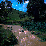 Fast flowing river, Puerto Rico, USA, Caribbean.