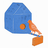 Bird with briefcase perching at nest box ExclusiveImage
