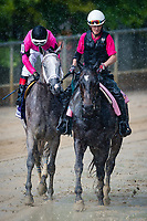 BALTIMORE, MD - MAY 19: Actress #10 (black hat), ridden by Nik Juarez, during the post parade, in pouring rain, for the Black Eyes Susan Stakes, in which he will eventually win on Black-Eyed Susan Day at Pimlico Race Course on May 19, 2017 in Baltimore, Maryland.(Photo by Douglas DeFelice/Eclipse Sportswire/Getty Images)