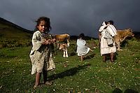 Arhuaco women and children in process of milking the cows. Sierra Nevada de Santa Marta, Colombia.