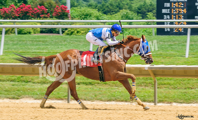 Fort Boonsboro winning at Delaware Park on 7/18/16