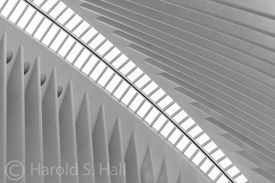 Santiago Calatrava builds nothing on a small scale. Nor does he ever build anything on time or under budget and free of controversy. For a photographer, the curves, lines and shapes provide a visually exciting playground.