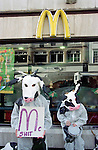 Protesters set up a stall in Cornmarket, Oxford on a  busy shopping day to protest against the unhealthy  food and mass consumerism that McDonalds encourage.  They handed out veggie nuggets ª and pamphletted passers by.