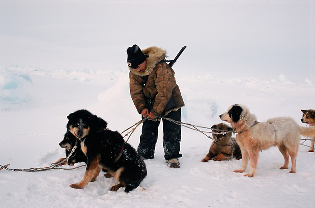 Oleg Ukutagin untangles his dogs' traces while hunting near Cape Dezhnev. Chukotka, Siberia, Russia.