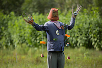 Europe/Belgique/Flandre/Flandre Occidentale/Bruges: culture de légumes biolgiques  et herbes aromatiques chez Loca Labora