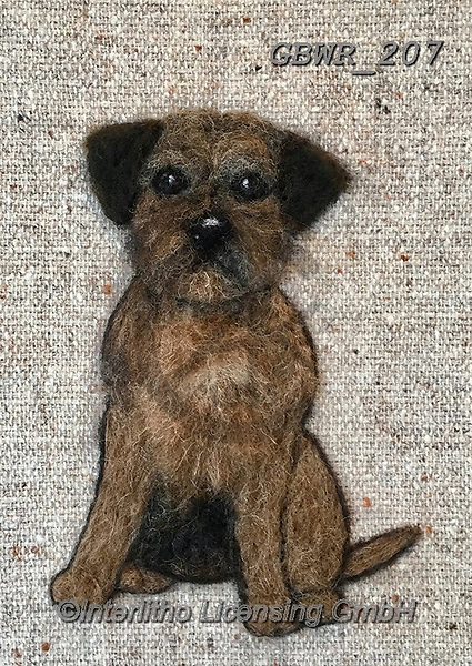 Simon, REALISTIC ANIMALS, REALISTISCHE TIERE, ANIMALES REALISTICOS, innovative, paintings+++++SharonS_BorderTerrier,GBWR207,#a#, EVERYDAY dogs,breeds of dog,