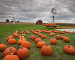 Bureau County, IL<br /> Fall scene of pumpkins, windmill and distant red barn under gathering clouds, Miller's produce stand