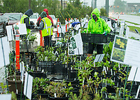 Members of the Benton County Master Gardeners fill orders Friday, May 15, 2020, during the 7th annual Benton County Master Gardeners plant sale at the Benton County Extension Office in Bentonville. Members of the Master Gardeners filled orders for customers as they drove through. The sale continues 10 a.m. to 4 p.m. Saturday. <br /> Go to nwaonline.com/200516Daily/ to see more photos.<br /> (NWA Democrat-Gazette/Ben Goff)