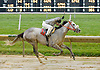 Mrs Ocean Breeze winning at Delaware Park on 10/15/12