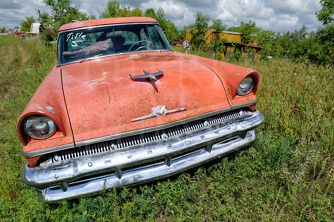 This old fifties Mercury was sitting up on the bank of the state road that left it at a disjointed angle in the high weeds. The road bordered a huge junkyard in rural western Minnesota, and the owners were kind enough to let me shoot there. I did so, for three solid days! It was full of fascinating relics...you name it, it was in there, and this car sat as a welcome wagon along the edge of that wonderland of rusted Americana. This was the first vehicle shot in a string of over 1300 images taken during those three days. Loved the faded yet still strong red color, and that fifties automotive vibe.<br />