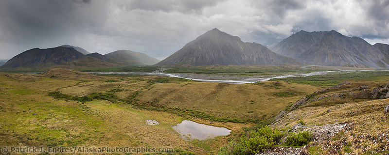 Marsh fork of the Canning River in the Arctic National Wildlife Refuge in the Brooks Range mountains, Alaska.