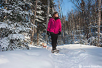 Snowshoeing in winter.