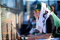 Dartmouth Big Green Steffen Torgersen (29) in the dugout during a game against the Northeastern Huskies on March 3, 2018 at North Charlotte Regional Park in Port Charlotte, Florida.  Northeastern defeated Dartmouth 10-8.  (Mike Janes/Four Seam Images)