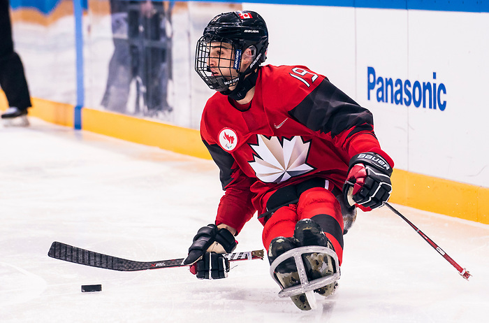 PyeongChang 15/3/2018 - Dominic Cozzolino (#19), of Mississauga, ON, in action as Canada takes on Korea in semifinal hockey action at the Gangneung Hockey Centre during the 2018 Winter Paralympic Games in Pyeongchang, Korea. Photo: Dave Holland/Canadian Paralympic Committee