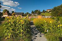 Musée et jardins Cécile Sabourdy - Vicq-sur-Breuil