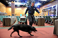 5-3-2014: A Garda and his dog perform a security sweep through the Dublin Conference Centre on Wednesday ahead of the EPP Group meeting which will be attended at 2,000 participants and 156 heads of state.<br /> Photo by Don MacMonagle<br /> <br /> Photo issued on behalf of EPPgroup<br /> Further information: fiona.kearns@europarl.europa.eu