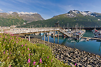 Whittier harbor, southcentral Alaska.