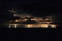 Summer lightning storm over the Nxai Pan National Park