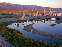 Mono Basin Scenic Area, CA<br /> Morning sun on tufa and shoreline sandbar patterns near Mono Lake's South Tufa Area