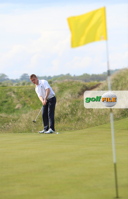 David Byrne (Greystones) on the 15th green during the 4th round of the East of Ireland Amateur Open Championship 2013 Co Louth Golf club 3/6/13<br /> Picture:  Thos Caffrey / www.golffile.ie