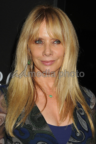 """27 October 2015 - Beverly Hills, California - Rosanna Arquette. """"Trumbo"""" Los Angeles Premiere held at the AMPAS Samuel Goldwyn Theater. Photo Credit: Byron Purvis/AdMedia"""