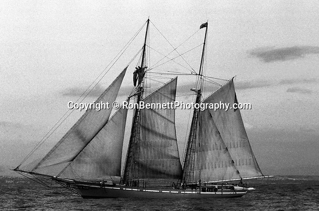 Schooner America sailing the Pacific Ocean off coast of California, tall ship,  California Fine Art Photography by Ron Bennett, Schooner, sailing vessel, tall ship, fore-and-aft sails, sails on two or more masts, forward mast shorter or same height, rear masts, schooners used by Dutch 16th 17th century, golden age of piracy, schooner popular craft for pirate, schooner has eight more cannons, schooner is sleek and fast crew of 75, rigging, bowsprit, jib, fore staysail, gaff topsail, foresail, main gaff topsail, mainsail, end of boom, 152 feet in length, Schooner, Fine Art Photography by Ron Bennett, Fine Art, Fine Art photography, Art Photography, Copyright RonBennettPhotography.com ©