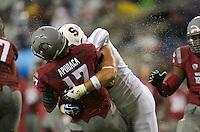 SEATTLE, WA - September 28, 2013: Stanford defensive end Ben Gardner, right, hits Washington State quarterback Austin Apodaca during play at CenturyLink Field. Stanford won 55-17