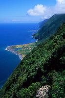 Faja Grande, ilha de Sao Jorge, Açores, 2005