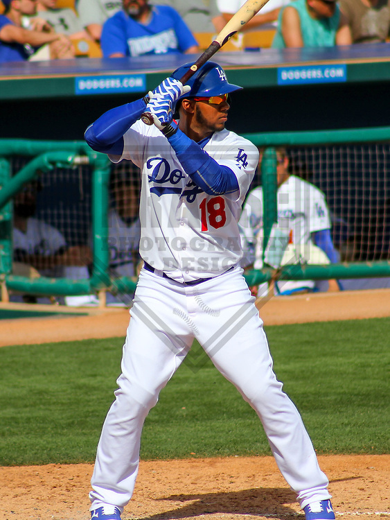 GLENDALE - March 2015: Erisbel Arruebarrena (18) of the Los Angeles Dodgers during a spring training game against the Cleveland Indians on March 17th, 2015 at Camelback Ranch in Glendale, Arizona. (Photo Credit: Brad Krause)