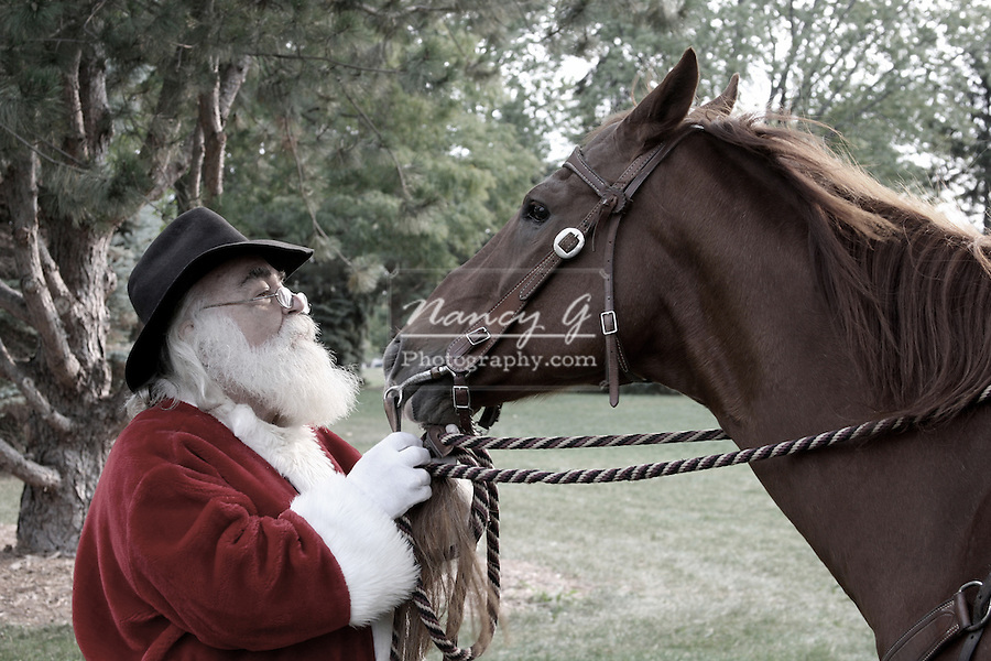 Western Santa Claus and his Quarter horse
