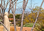 Sculpture garden at Museum Hill in Santa Fe, New Mexico