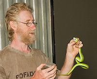 British herpetologist Mark O'Shea prepares to milk the venom of a Sunda Island pitviper, Cryptelytrops insularis, at Bakhita Mission, near Eraulo, Ermera District, Timor-Leste (East Timor)