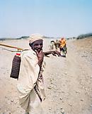 ERITREA, Foro, A Bedouin herder follows his livestock down a dirt road