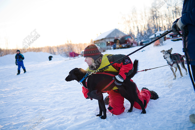 Dog musher Jill Garnet competes with her dogs on the Montana Creek course. Near Willow, Alaska, December 20, 2008.