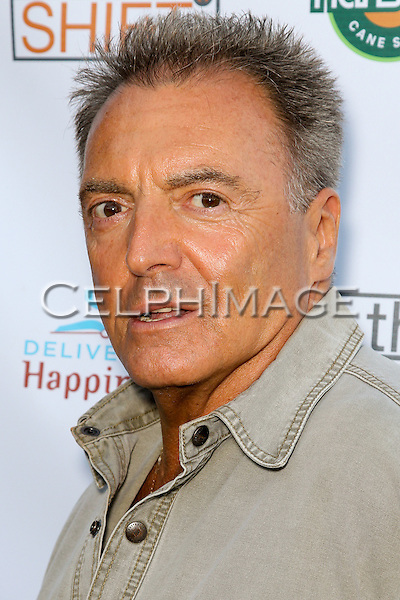 ARMAND ASSANTE. Red Carpet arrivals to the launch event of Be The Shift at Industry Night Club. West Hollywood, CA, USA. 6/14/2010..