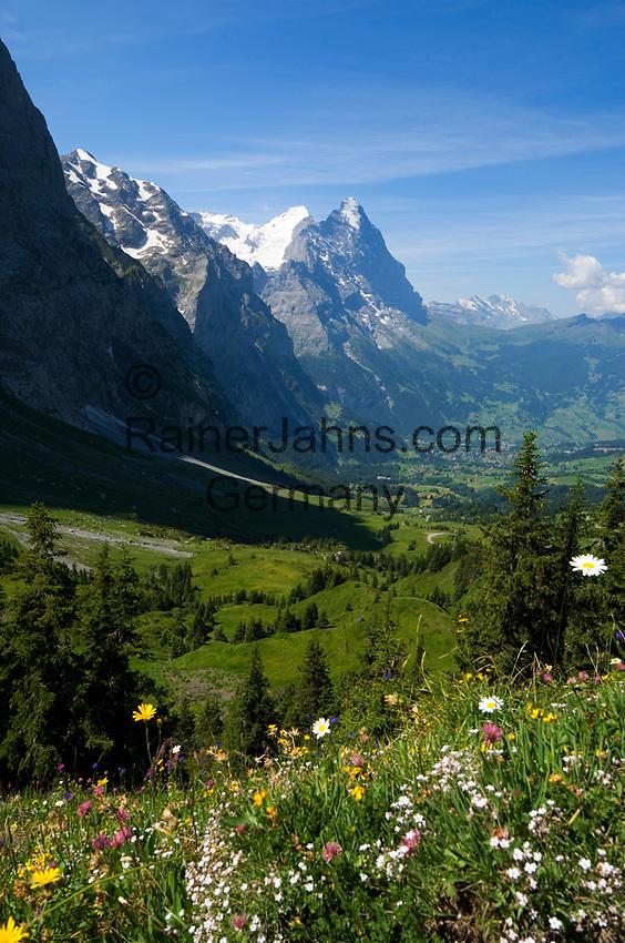 CHE, Schweiz, Kanton Bern, Berner Oberland, Grindelwald: Grosse Scheidegg - Blick auf die Gipfel von Eiger (3.970 m) mit Eigernordwand und Moench (4.107 m) | CHE, Switzerland, Canton Bern, Bernese Oberland, Grindelwald: Grosse Scheidegg - view at peaks of Eiger (3.970 m) with Eiger-Northface and Moench (4.107 m)