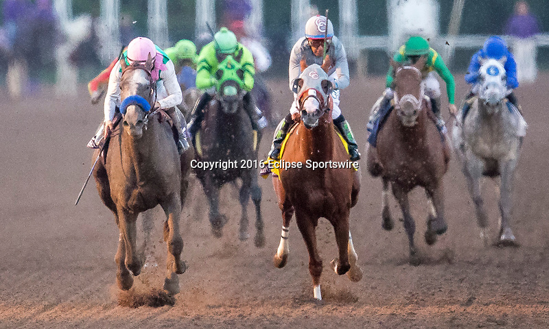 ARCADIA, CA - NOVEMBER 5: Arrogate #10, ridden by Mike Smith, finishes first ahead of California Chrome #4, ridden by Victor Espinoza, in the the Breeders' Cup Classic during day two of the 2016 Breeders' Cup World Championships at Santa Anita Park on November 5, 2016 in Arcadia, California. (Photo by Kaz Ishida/Eclipse Sportswire/Breeders Cup)